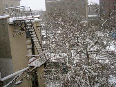 snowscones.jpg